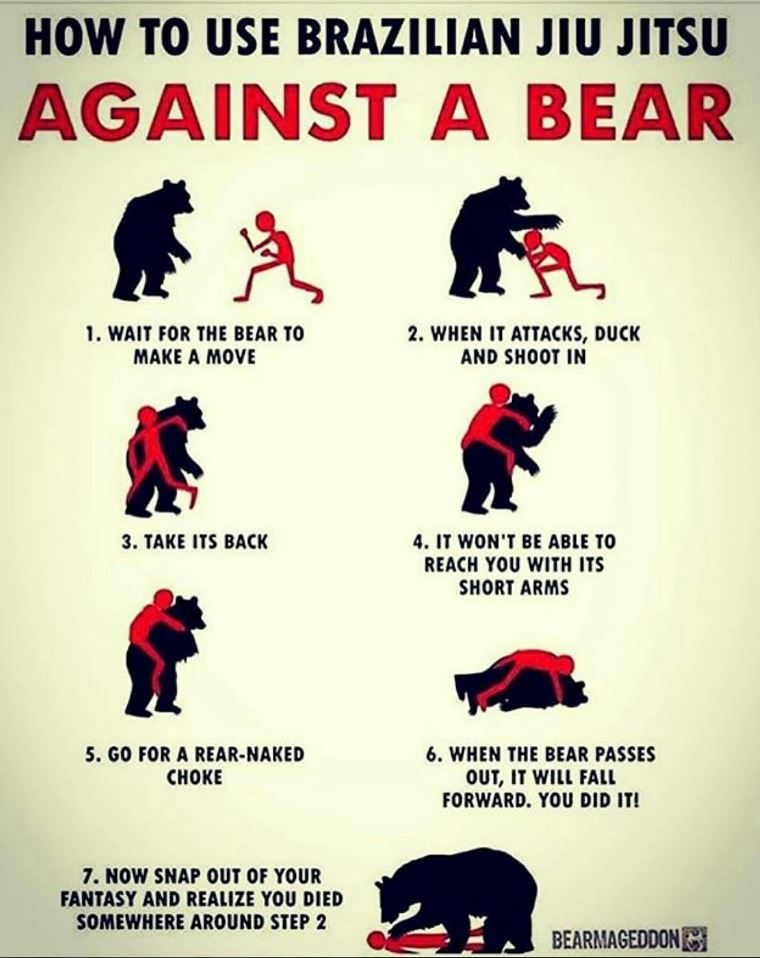 How to Use Brazilian Jiu Jitsu Against a Bear