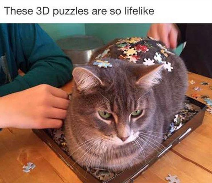 35 Funny Pictures You're Going To Love